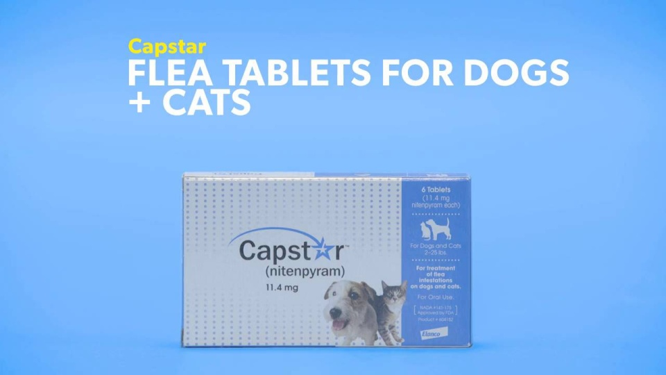 Capstar Flea Tablets For Dogs Cats At Low Prices Free Shipping