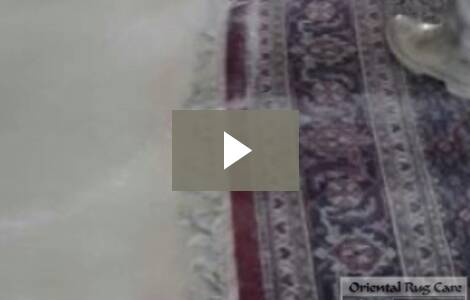 How To Service Carpet Cleaners In Miami?
