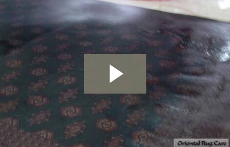 Oriental Rug Cleaning Fort Lauderdale