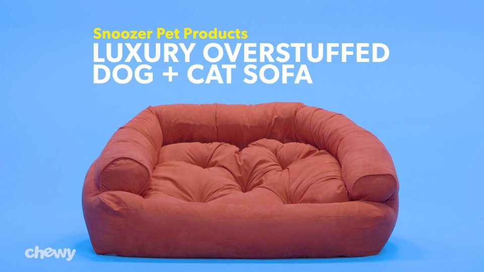 Snoozer Pet Products Luxury Overstuffed Dog Cat Sofa Anthracite X Large Chewy