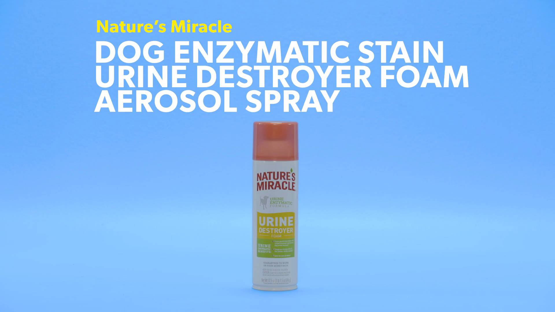 Nature's Miracle Dog Enzymatic Stain