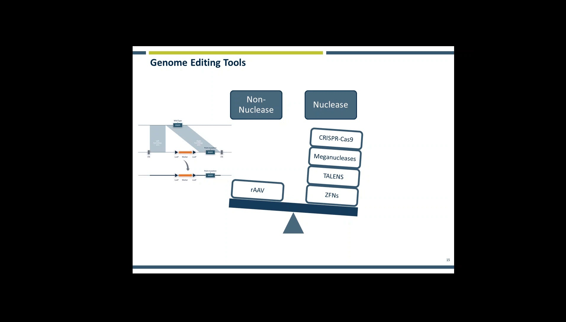An Introduction to CRISPR Genome Editings