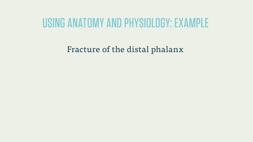 CPC Exam: Anatomy and Physiology