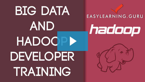 Hadoop Big Data Online Training Video Image