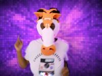 Video: Go Fun Face (2).mp4