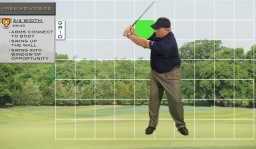 Swing to Perfection: Swing Like the Pros