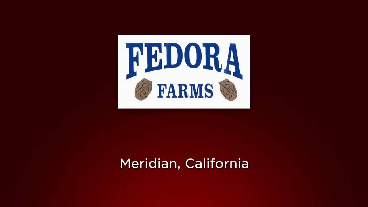 (Spanish) Caso de Opto 22- Fedora Farms