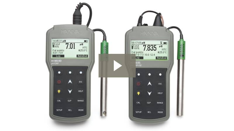 Portable Ph Orp Meter Hi98190 Hanna Instruments