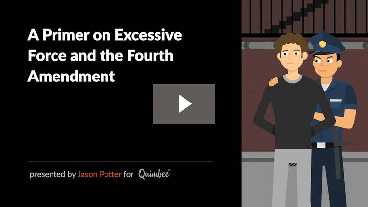 A Primer on Excessive Force and the Fourth Amendment