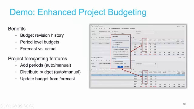 Project budget forecasts (2019 R1)