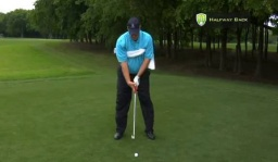 Golf Swing at the Halfway Back Position