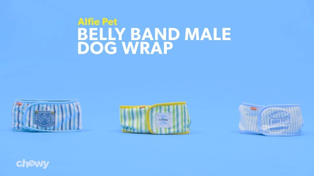 Alfie Pet Size: Small Cayden Denim Belly Band 2-Piece Set for Boy Dogs Color: Navy