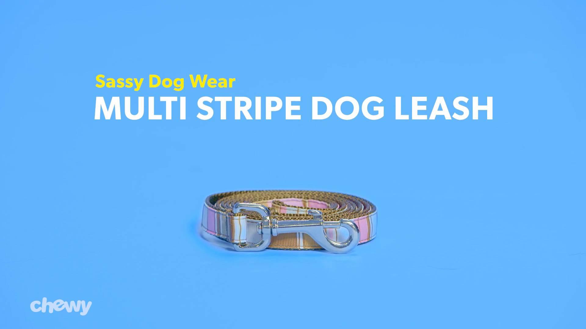 Sassy Dog Wear Multi Stripe Dog Leash