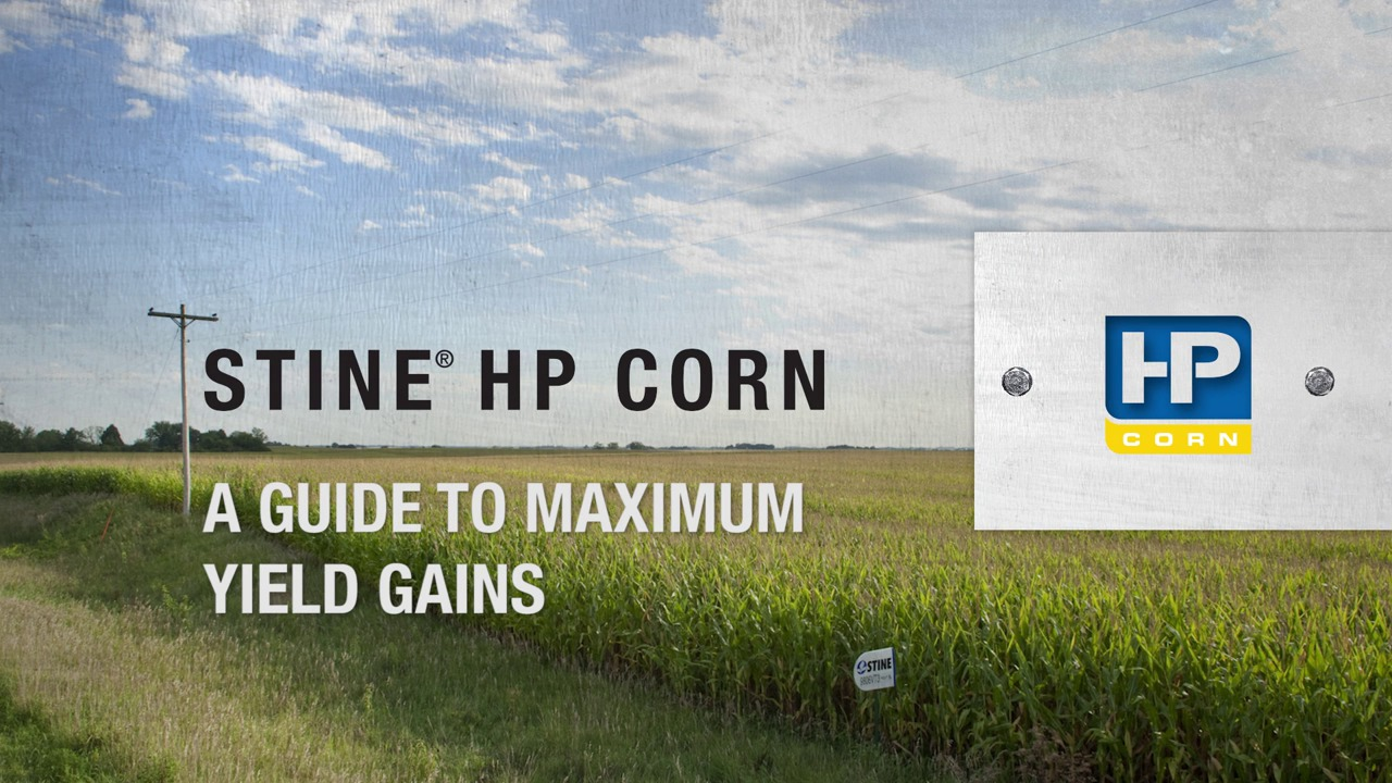 Stine HP Corn: A Guide to Maximum Yield Gains