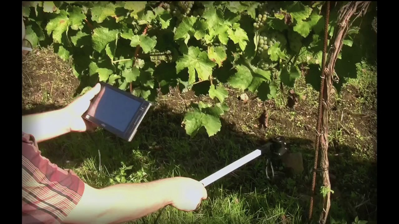 Video & CI-110 Plant Canopy Imager | Tools for Applied Plant Science | cid ...