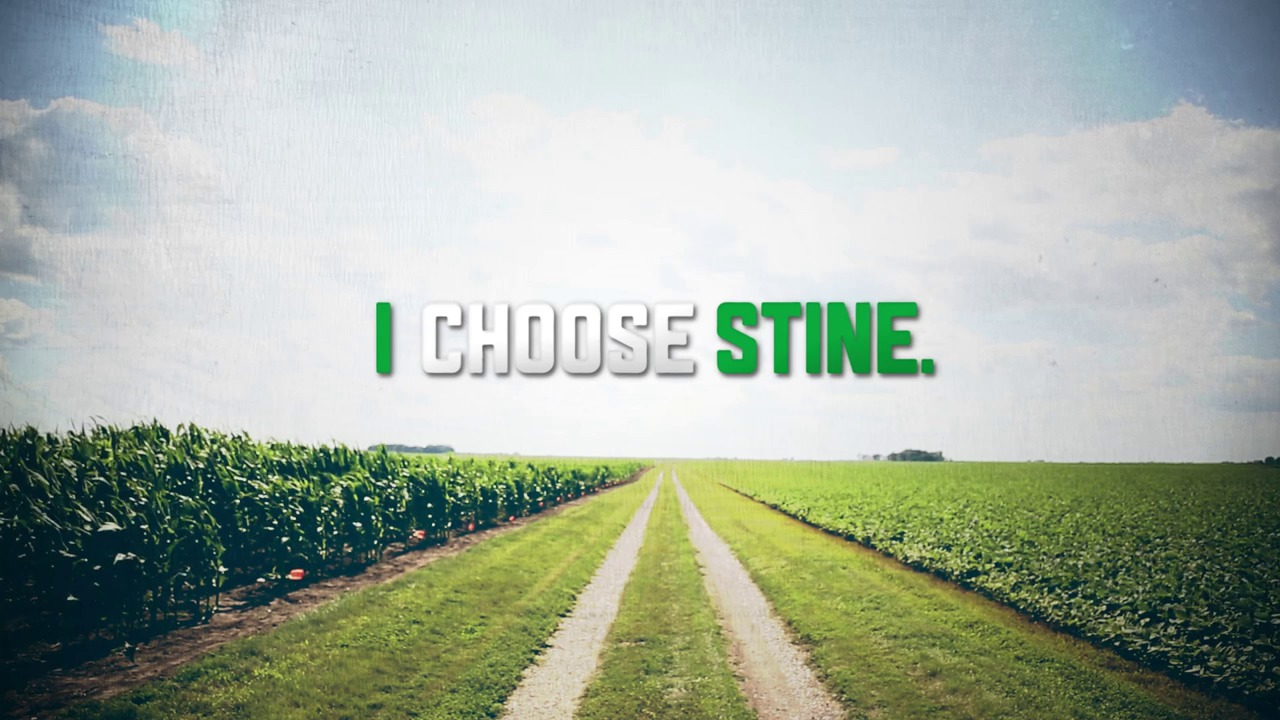 I Choose Stine