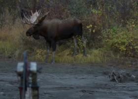 Inside & Out Season 5: Episode 4 - Yukon Moose Part 2