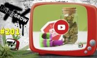 UNDERGROW TV #201 Dudas sobre cultivo, Cultivo automáticas 2, Hot Box House cup, Torneo Mary Jane