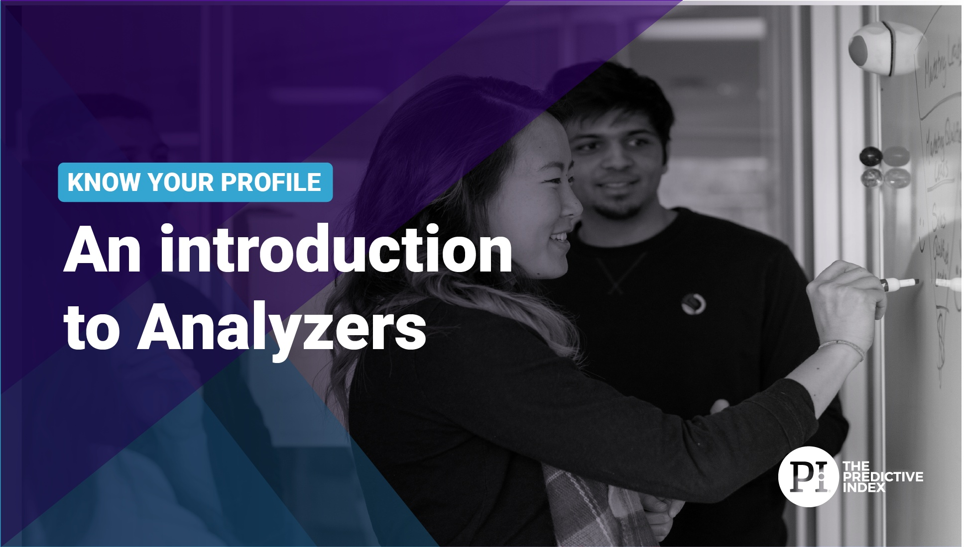 Introducing the Analyzer