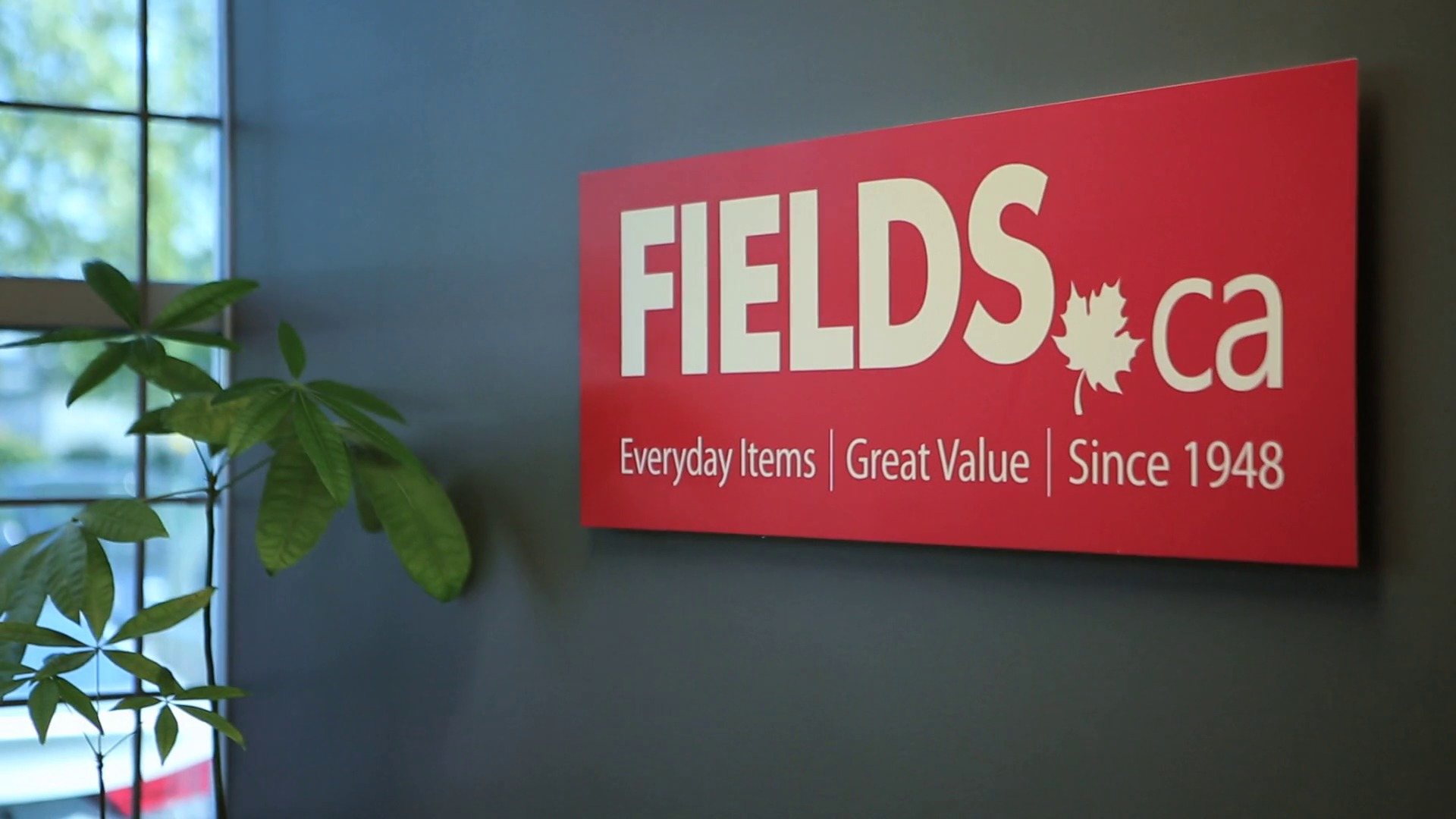 Fields Case Study Video