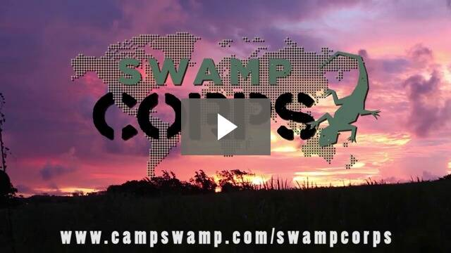 Swamp Corps Introduction Video