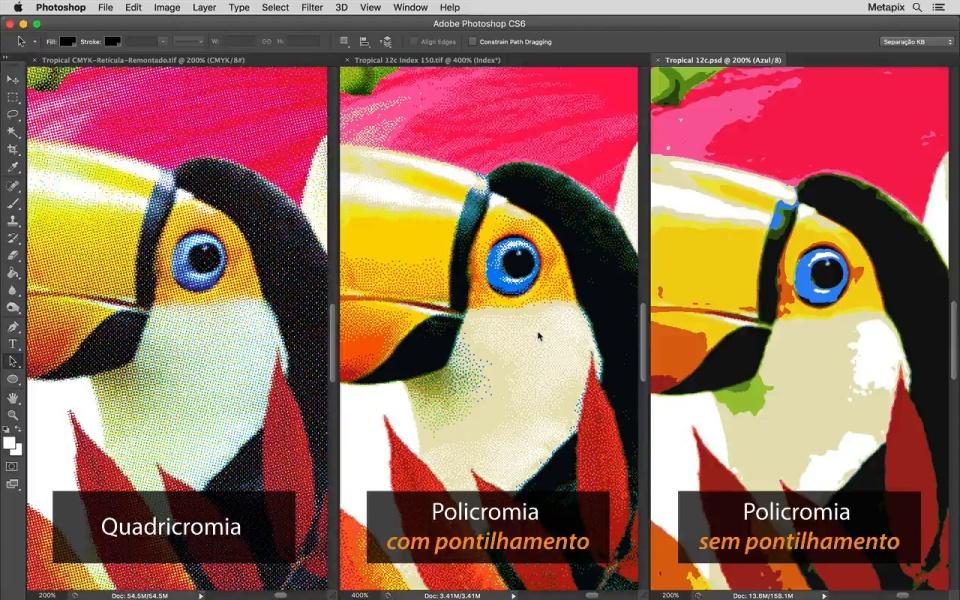 Imagem de tucano com diferentes exemplos de pontilhamento