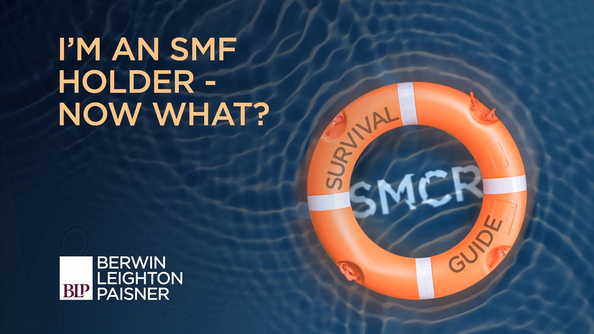 Still image from 'SMCR: I'm an SMF holder - now what?' video
