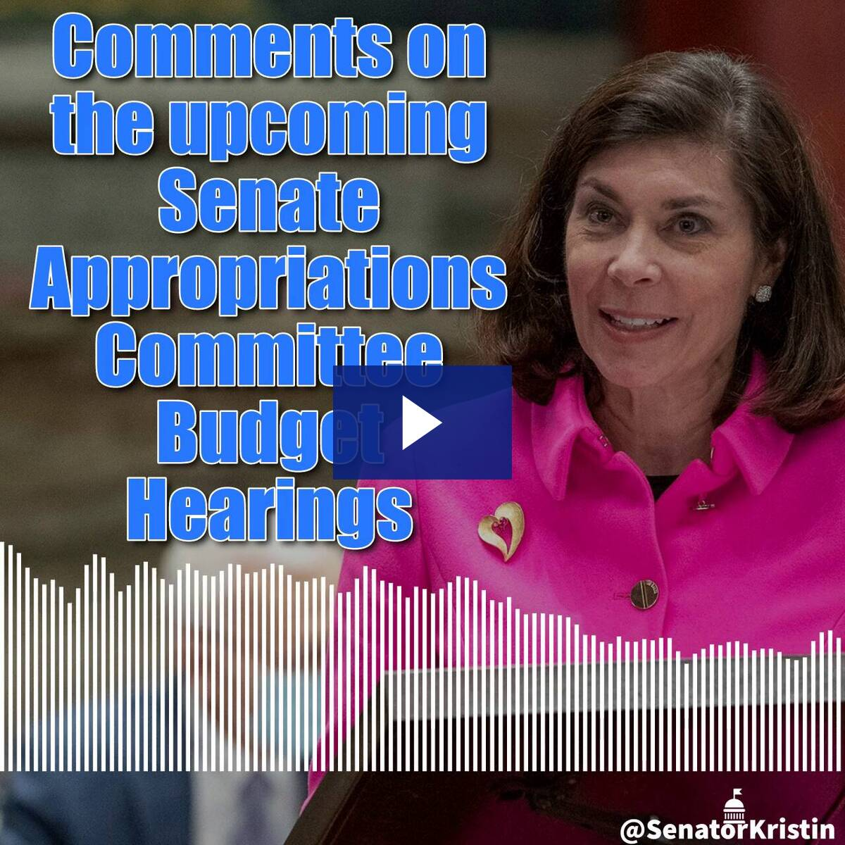 3/5/21 - Preview of Upcoming Budget Hearings