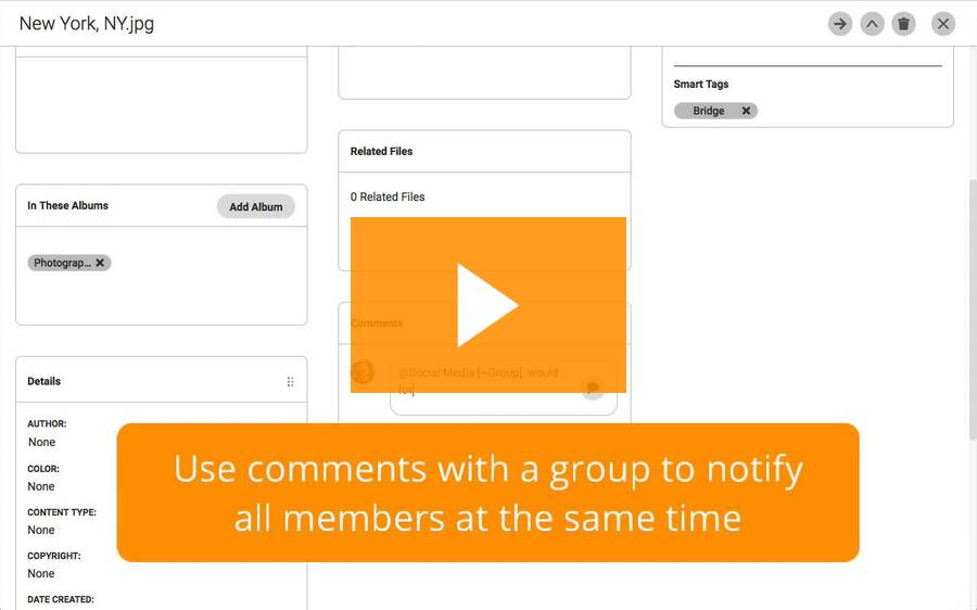 How to set up user groups in Flight by Canto