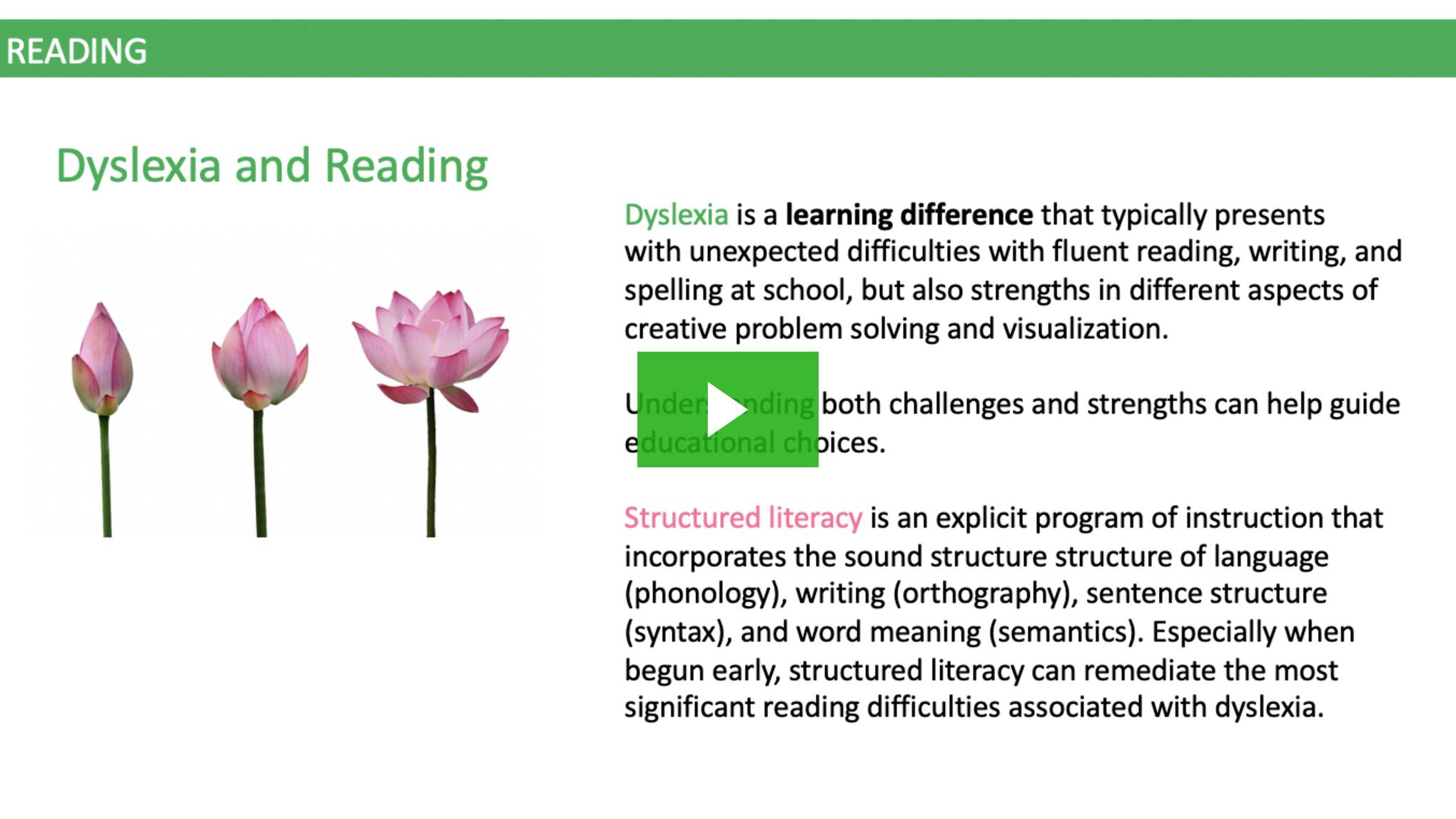 Reading and Structured Literacy