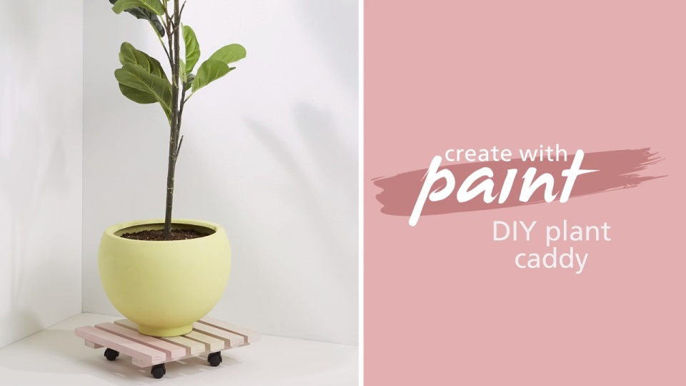 Habitat TV Video: DIY plant caddy
