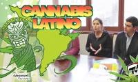 Conoce las asociaciones cannábicas de Chile