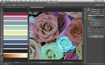 Casando cores entre imagens no Photoshop (Match Color)