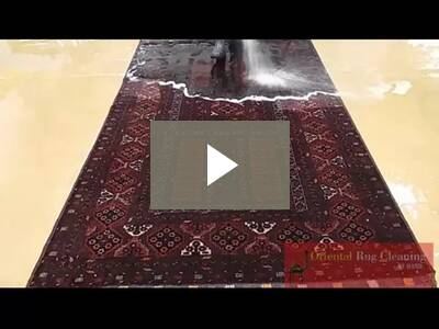 Rug Cleaning Naples Pet Odor Removal Naples Video Gallery