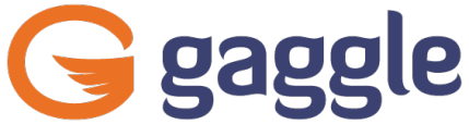 Real Student Safety Saves Lives. | Gaggle