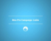 Moz Pro Campaign: Links