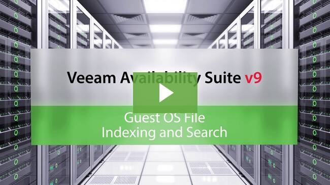 Guest OS file indexing and search