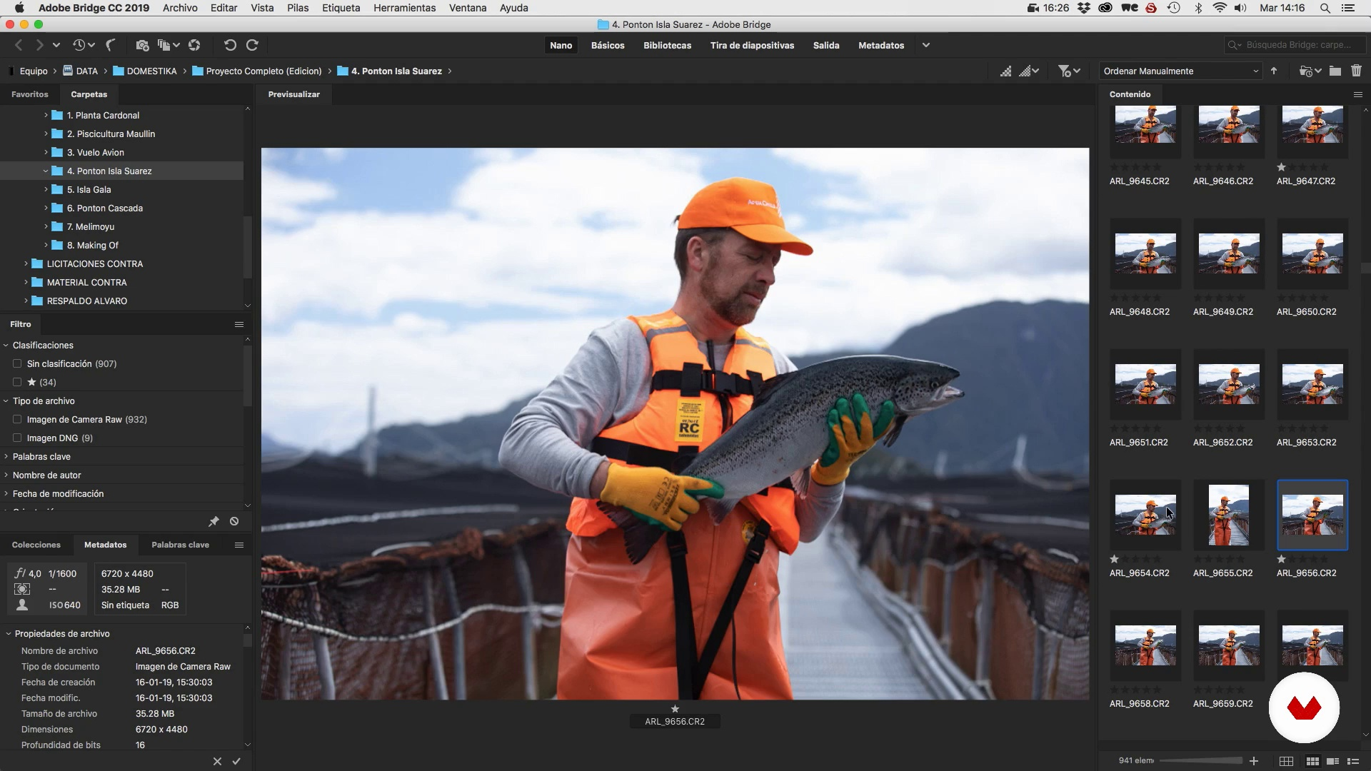 """Filters and classification of photographs and themes in Adobe Bridge. 