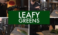 Thumbnail for Leafy Greens / Leafy Greens Part 1