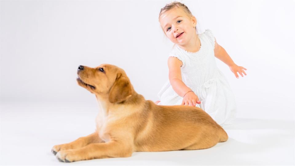 De eerste 30 dagen met je puppy