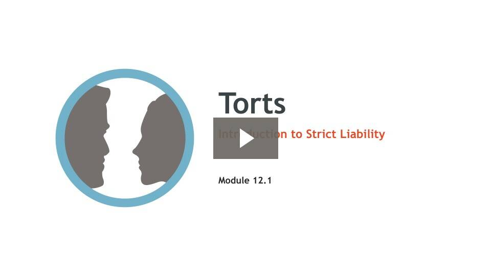Introduction to Strict Liability