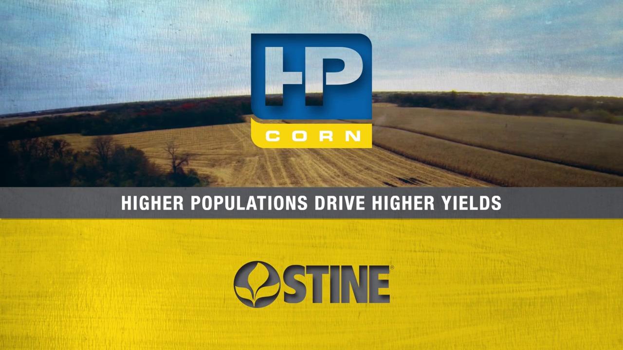 Stine HP Corn