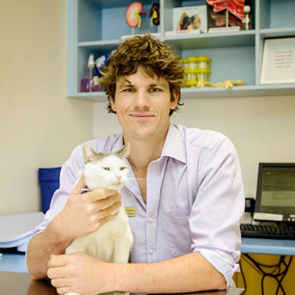 Michael Stephen Profile Picture