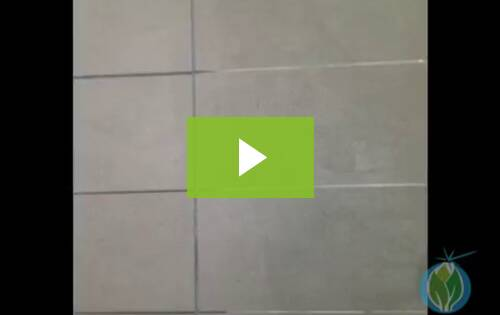 Grout Cleaning Philadelphia
