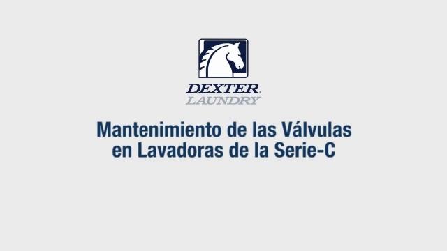 Limpieza y Servicio a la Válvula de Entrada de Agua de Dexter