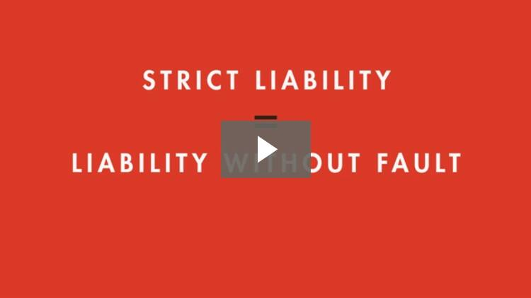 Introduction to Vicarious and Strict Liability
