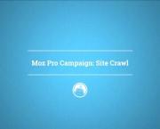 Moz Pro Campaign: Site Crawl