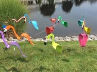 Video: Flamingos Video.mov