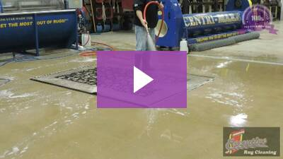 Our Video Gallery Executive Rug Cleaning Repair Pet