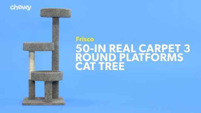 Frisco 50 In Real Carpet Wooden Cat Tree Beige Chewy Com